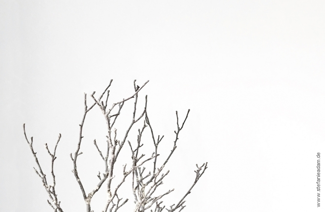Fesselnd Die Eigene Wohnung Zu Dekorieren, Um Sich Darin Wohler Zu Fühlen, Muss  Nicht Mit Einem Großen Rundumschlag Verbunden Sein. In Diesem Artikel Teile  Ich Drei ...