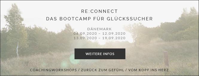 Reconnect Das Bootcamp für Glückssucher, Stefanie Adam